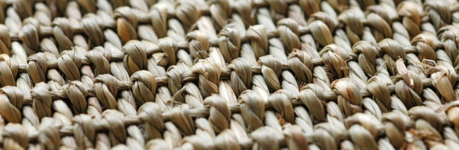 seegrasteppich